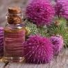 Краса за копійки: реп`яхову олію для волосся