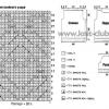 В`язані кофти спицями зі схемами та описом: найоригінальніші візерунки